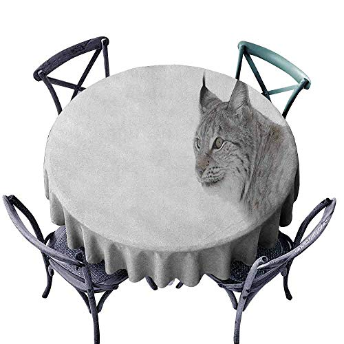 (ScottDecor Overlay Round Tablecloth Circular Table Cover Hunting,Lynx in The Central Norway Wild Cat North Cold Snowy Mountain Carnivore Predator, Grey White Diameter 70