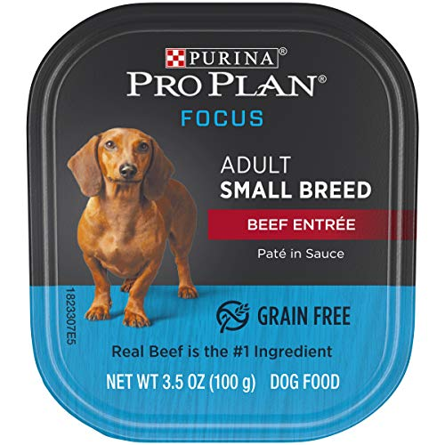 (Purina Pro Plan Grain Free, High Protein Small Breed Pate Wet Dog Food; FOCUS Beef Entree in Sauce - 3.5 oz. Tray)