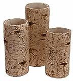Boston International Birch Pillar Candle Holders, Set of 3 For Sale