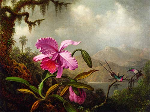 Martin Johnson Heade Orchids and Hummingbirds Near a Mountain Lake 1875-1890 Private Collection 30