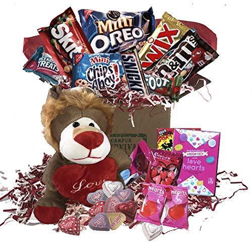 - Sweetheart Valentine Care Package (Lion)