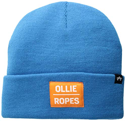 Rome Snowboards Graphic Snowboarding Logo Beanie Hat, for sale  Delivered anywhere in USA