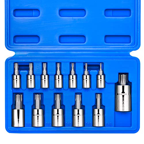 Neiko 10071A Torx Bit Socket Set, Metric, T8-T60 | 13-Piece Set, S2 and Cr-V Steel, 1/4
