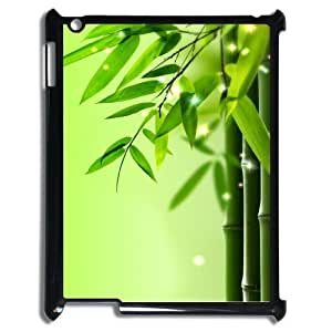Bamboo New Fashion DIY Phone Case for Ipad2,3,4,customized cover case ygtg-335342