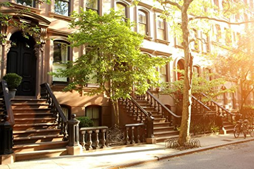Rows of Beautiful Brownstones in New York City Photo Photograph Cool Wall Decor Art Print Poster 36x24