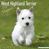 West Highland Terrier Puppies Calendar - Dog Breed Calendars - 2017 - 2018 wall Calendars - 16 Month by Avonside