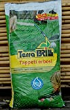 Topsoil for Lawns 50 L Bag