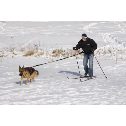 UltraPaws Skijor Package, My Pet Supplies