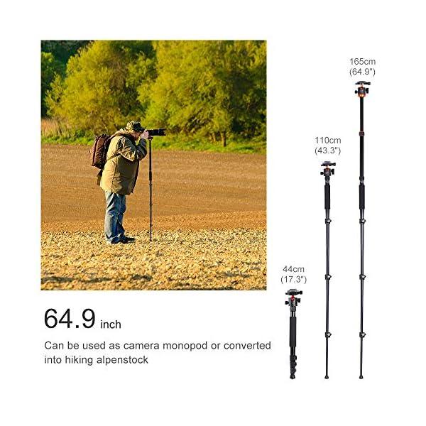 K Amp F Concept Kamerastativ Sa254m1 Aluminium Stativ Mit Einbeinstativ 1 4 Zoll Gewinde Reisestativ Mit 360 Kugelkopf