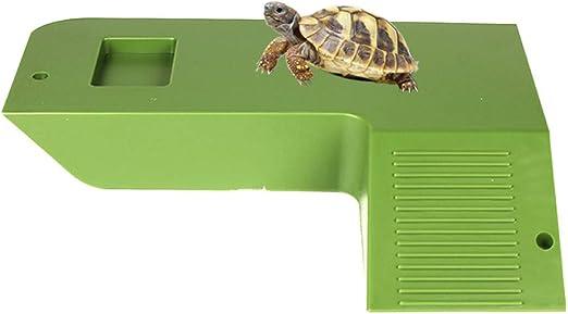 Amakunft - Plataforma de Secado de Tortuga de tamaño Grande con escaleras, alimentador y escondite: Amazon.es: Productos para mascotas