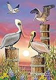 Pelicans at Sunset Summer Garden Flag Nautical 12.5