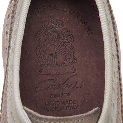 Man Scarpe Corvari F4764 Taupe Scarpa Perforated Shoe grigio grey Uomo Forata Tortora qXzSpX4x