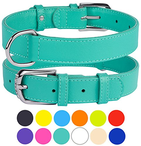 Boxer Dog Mint (CollarDirect Genuine Leather Dog Collar, Handmade Collar for Dog, Puppy Collar Small Medium Large Soft Padded Pink Black Purple Orange Red Green White Blue Lime (Mint Green, Size S Neck Fit 11