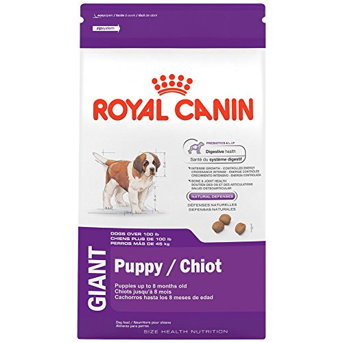 ROYAL CANIN HEALTH NUTRITION GIANT Puppy dry dog food, 30-Pound