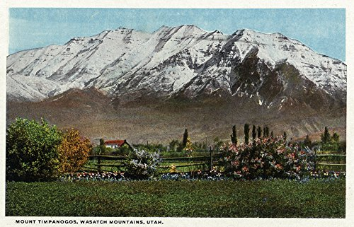 Utah   View Of Mount Timpanogos In The Wasatch Mountains  36X54 Giclee Gallery Print  Wall Decor Travel Poster
