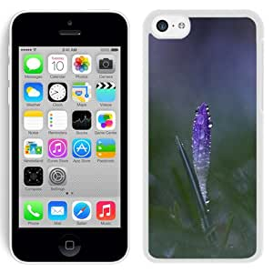 New Beautiful Custom Designed Cover Case For iPhone 5C With Purple Bud (2) Phone Case