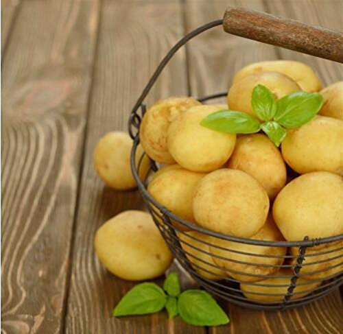 Potato Yukon Gold Flavorful Yellow-skinned and Yellow-fleshed Potatoes Fruit and Vegetable Seeds For Home Garden 50PCS ()
