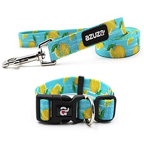 azuza Dog Collar and Leash Set, Adjustable Nylon Dog Collar with Matching Leash, Lemon, Extra Small