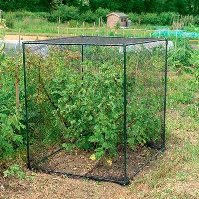 Gardman Small Fruit Cages, Black, 47''H, Pack of 2 by BestNest