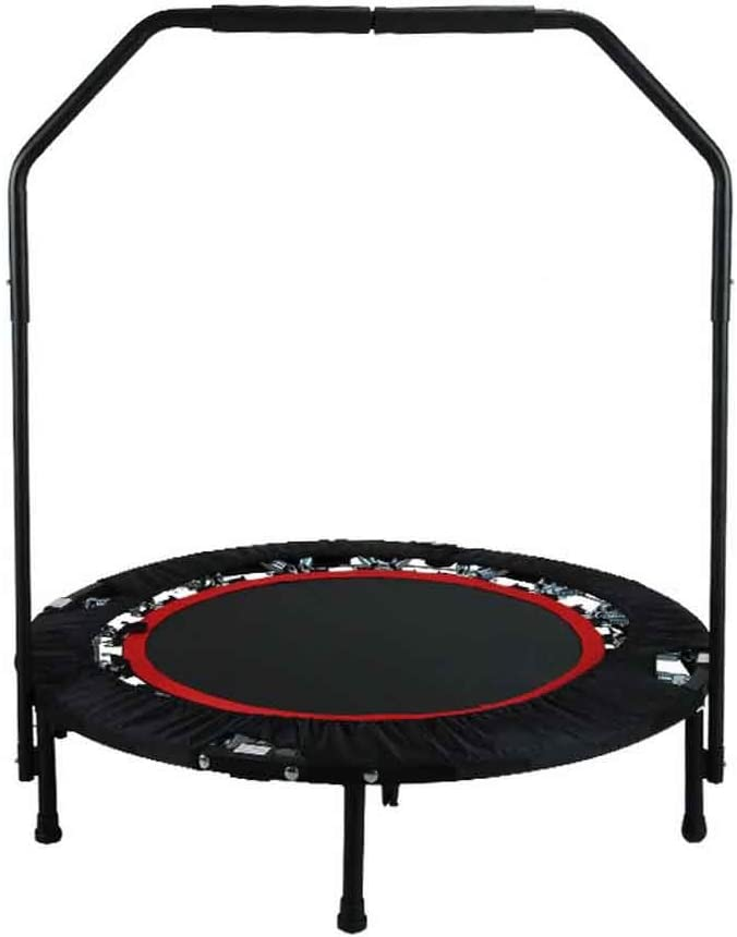ANCHEER Fitness Trampoline for Kids with Handle Bars,40'' Rebounder Trampoline Bungee Folding,Adult Home Gym Exercise Workout Jumper with Stability for Weight Loss, Indoor/Outdoor Cardio