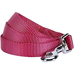 "Blueberry Pet 19 Colors Durable Classic Dog Leash 5 ft x 5/8"", Very Berry, Small, Basic Nylon Leashes for Dogs"