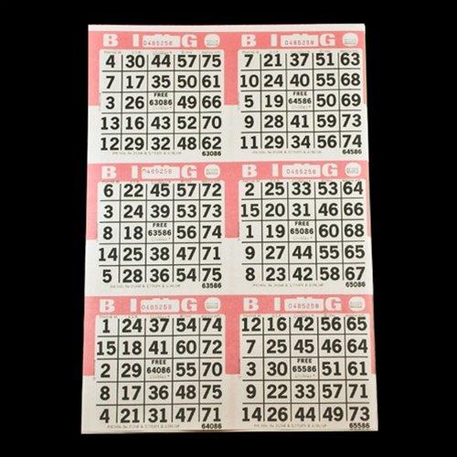 American Games 6auf Rosa Bingo Papier Karten–500Blatt–3000Karten American Games INC
