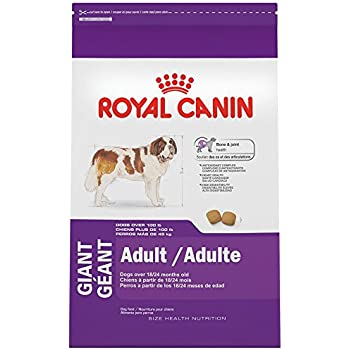 royal canin size health nutrition maxi adult dry dog food 35 pound pet supplies. Black Bedroom Furniture Sets. Home Design Ideas