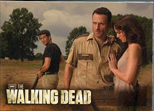 The Walking Dead Season 2 Complete 80 Card Base Set