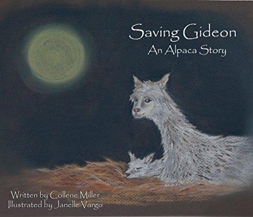 Saving Gideon, An Alpaca Story Baby Suri Alpaca