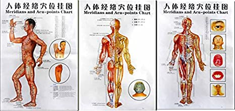 Amazon Com 3 Massage Poster Charts Meridians And Acupuncture