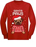 Santa Paws Pug Ugly Christmas Sweater Dog Youth Kids Long Sleeve T-Shirt Medium