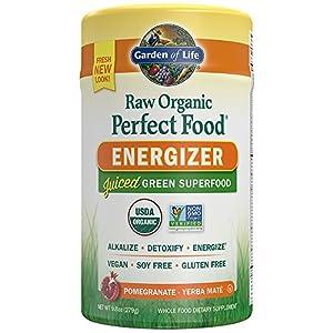 Garden of Life Vegan Green Superfood Powder - Raw Organic Perfect Whole Food Energizer Dietary Supplement, 9.8oz (279g) Powder