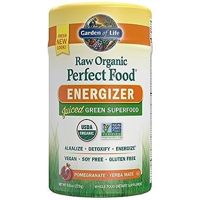 Garden of Life Vegan Green Superfood Powder – Raw Organic Perfect Whole Food Energizer Dietary Supplement, 9.8oz (279g) Powder 51 2BLa 2BXUqPL