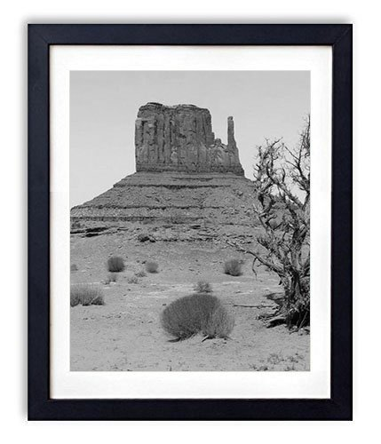 (SHADENOV Black Wood Framed Wall Art - Desert Canyon Vegetation Drought - Art Print Pictures For Wall Decoration 12x16 Inches Black and White)