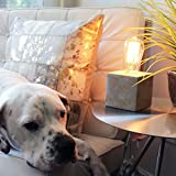 Davy Concrete Base Filament Bulb Modern Accent Lamp Antique Grey Edison Bulb Included