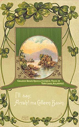 International Art Publishing Co St. Patrick's Day Postcard International Art Publishing Company 1913