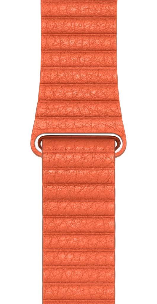 Apple Watch Leather Loop (44mm) - Sunset - Medium by Apple (Image #2)