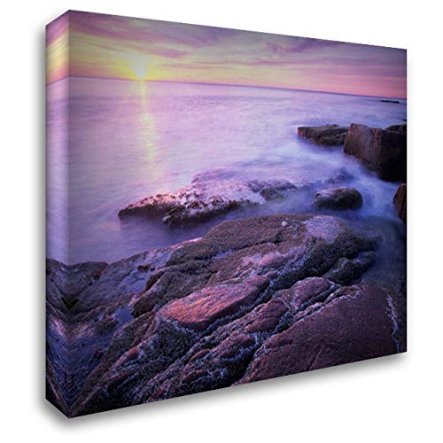 (Atlantic Coast Near Thunder Hole, Acadia National Park, Maine 46x36 Extra Large Gallery Wrapped Stretched Canvas Art by Fitzharris, Tim)