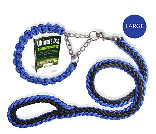 (Olivery Heavy Duty Dog Martingale Braided Collar with Solid Hand Crafted Leash (Blue,)