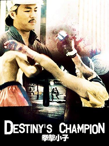 Destiny's Champion