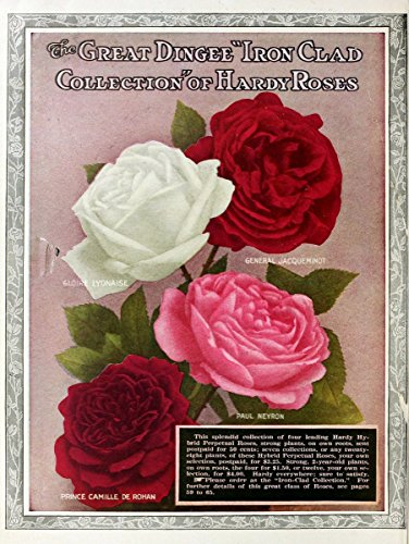 (Dingee guide to rose culture. West Grove, | Catalogs