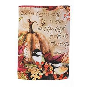 La colección de otoño verde de calabaza y Chickadee Evergreetings y tarjetas de felicitación