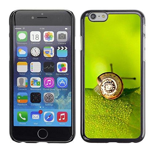 "Premio Sottile Slim Cassa Custodia Case Cover Shell // V00003842 escargot sur la feuille // Apple iPhone 6 6S 6G PLUS 5.5"""