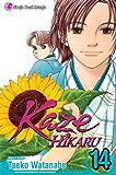 Kaze Hikaru, Vol. 14