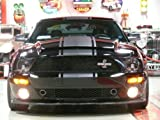 Hi-Performance Snake Stripes With Pinstripe For Mustangs & GT 05-09 Models