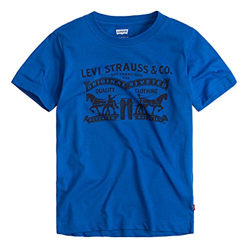 Levi's Boys' Little Two Horse Pull Graphic T-Shirt, Princess Blue, 4