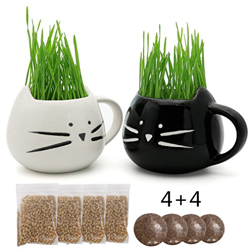 Teagas Organic Cat Grass Kit with Black and White Cat Grass Planters, Organic Soil, Natural Hairball Control and Hairball Remedy for Cats
