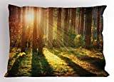 Lunarable Woodland Pillow Sham, Autumn Scenery in The Woods Misty Forest View Peaceful Looking Pine Trees Nature, Decorative Standard King Size Printed Pillowcase, 36 X 20 inches, Multicolor