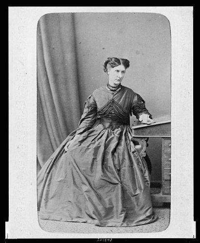 ladies dresses 1880 - 3