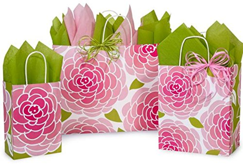Gift Bags, Assorted Sizes, Bundled with Coordinating Tissue Paper and Raffia Ribbon (Rose Blossom)